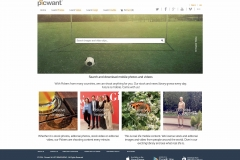 Picwant_website